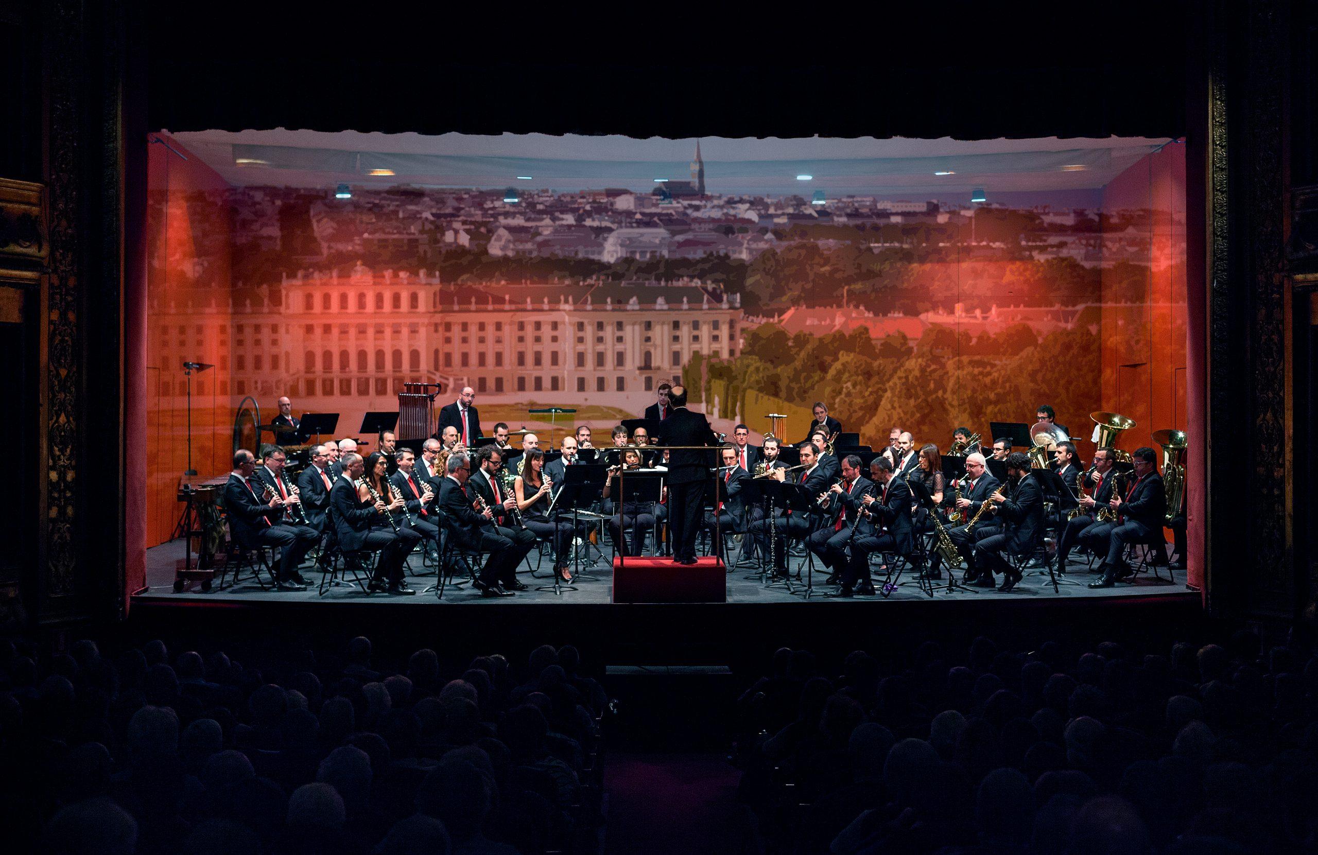 Un día en Viena